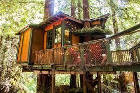 隐居山林,不问世事   Redwood Treehouse Santa Cruz Mtns