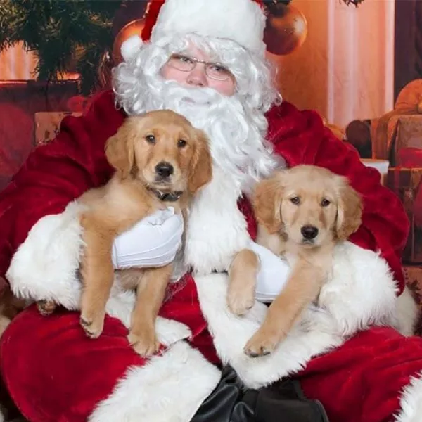 11/20 毛小孩也要过圣诞 Santa Paws Pet Photo Nights at the collection