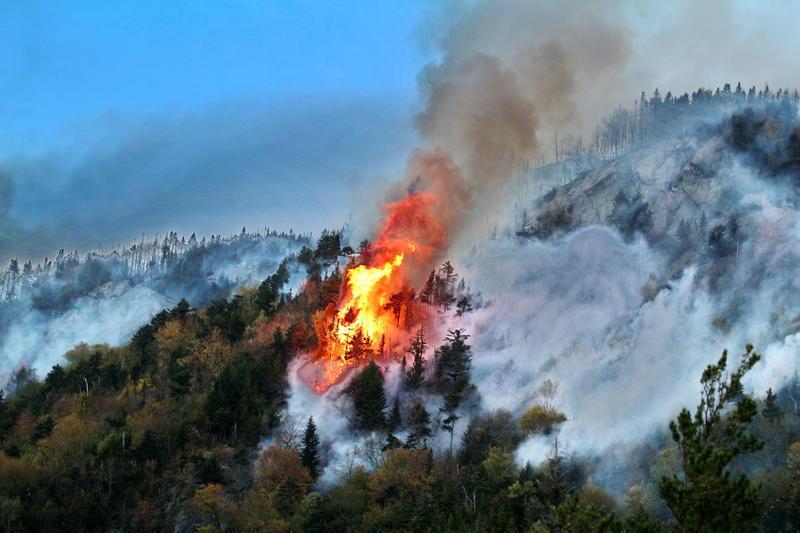 北极圈野火至1月份以来仍在燃烧,已制造了2.5亿吨二氧化碳
