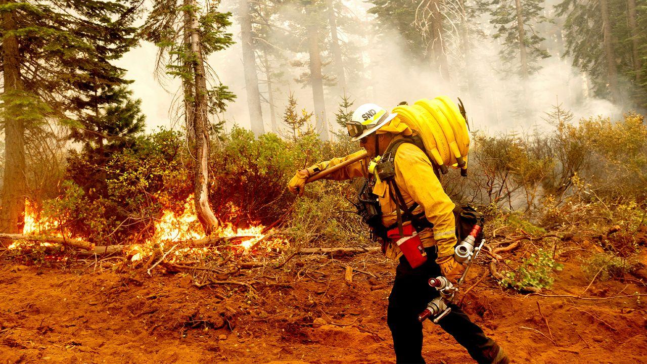 南加州埃尔多拉多大火火势已控制44%