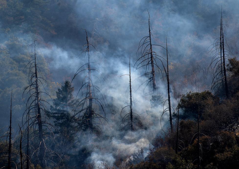 南加州艾尔都拉都野火24小时内再次扩大烧毁3,000英亩