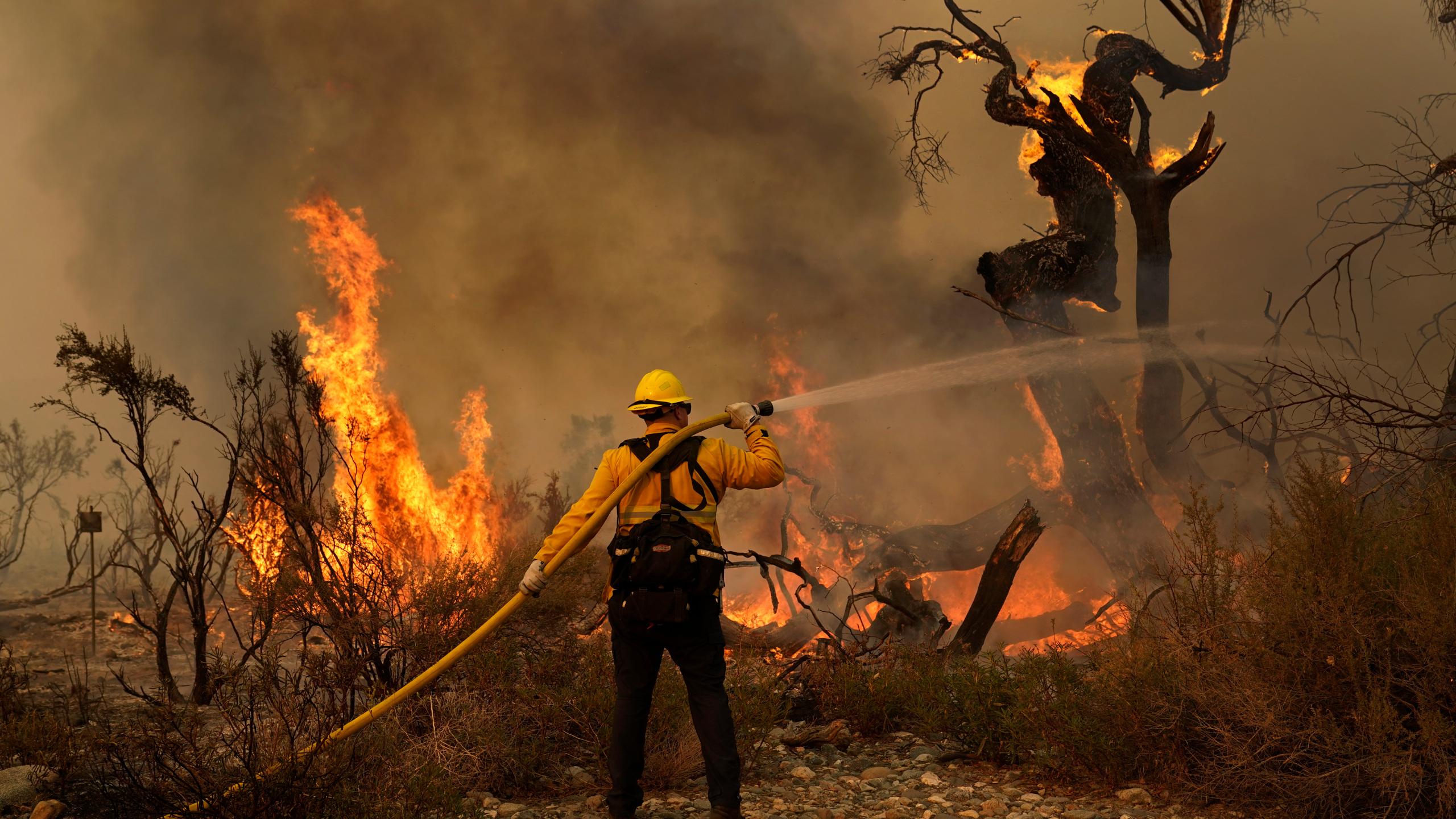 山猫野火延烧面积将近10万英亩
