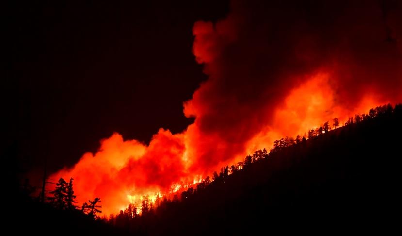 山猫野火连续延烧16天,强风天气推动火势肆虐
