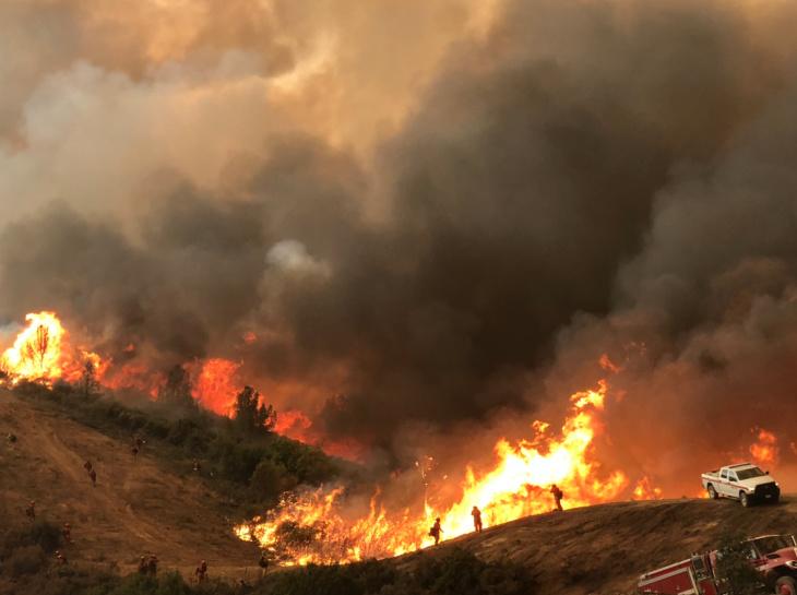 山猫野火延烧面积已达11.5万英亩,起火原因仍在调查