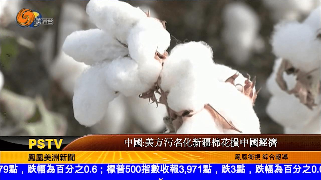 中國:美方污名化新疆棉花損中國經濟