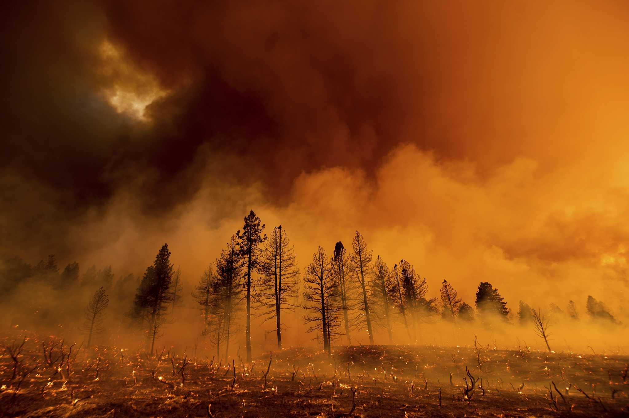 天干物燥,野火四起!华盛顿州、俄勒冈州和加州多处起火;不列颠哥伦比亚省300多起野火正在燃烧