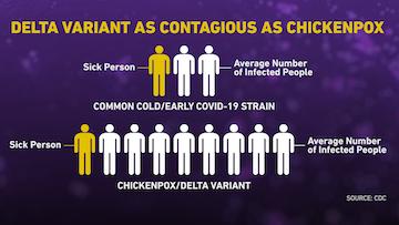 7/30美国疫情更新:1传9!Delta变异病毒肆虐美国,传染性堪比水痘!迪士尼和沃尔玛强制要求员工接种疫苗